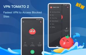 VPN Tomato For PC