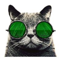 Cat VPN for PC