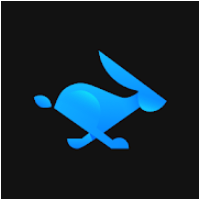 Rabbit VPN for PC