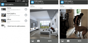 P2PCAMPro for PC