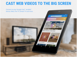 Web Video Caster for PC