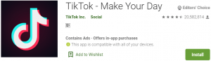 TikTok for PC Download