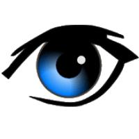 Agent Video Surveillance for PC